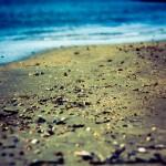 Photo du sable et des coquillages au bord de l'eau