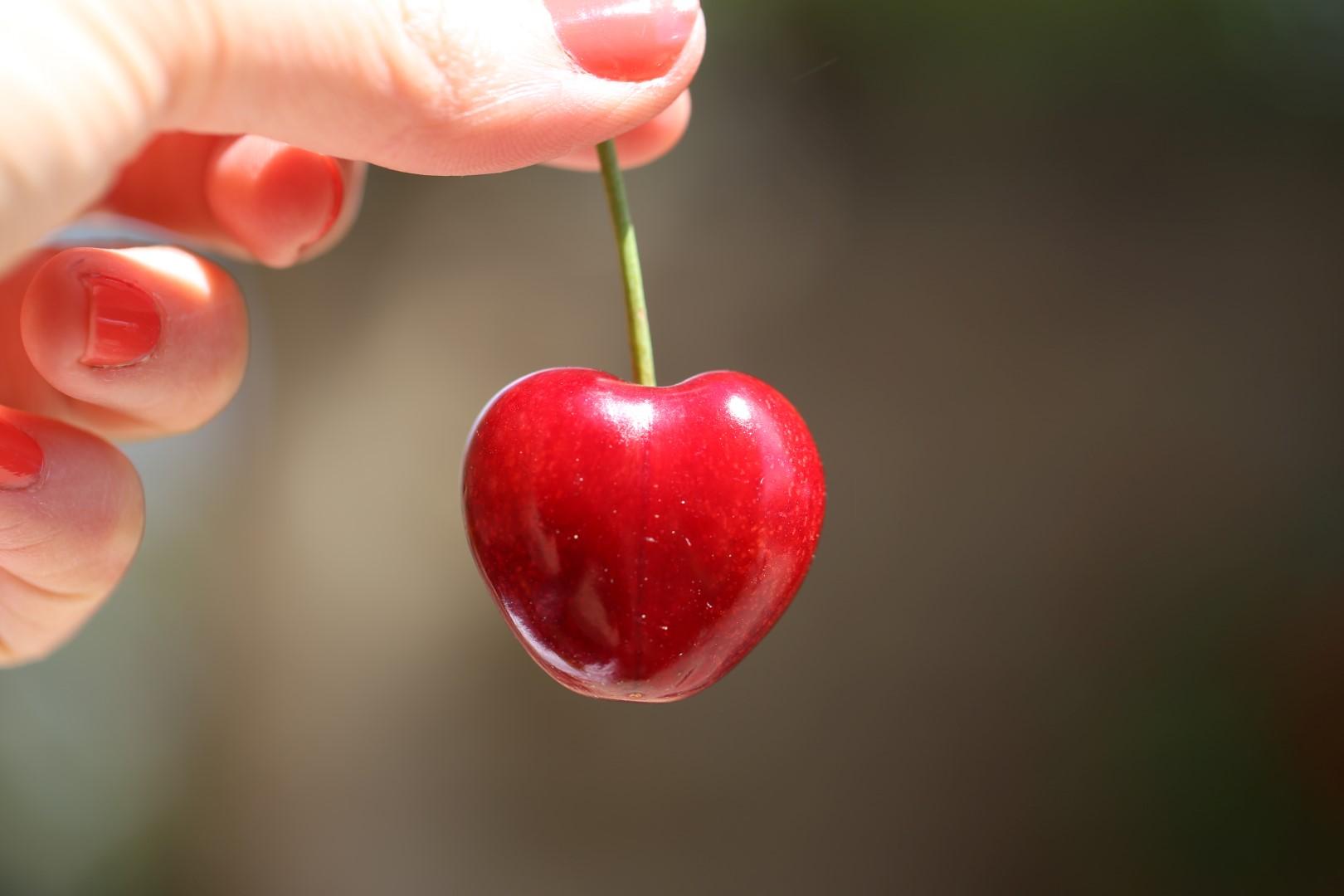 cerise en forme de coeur