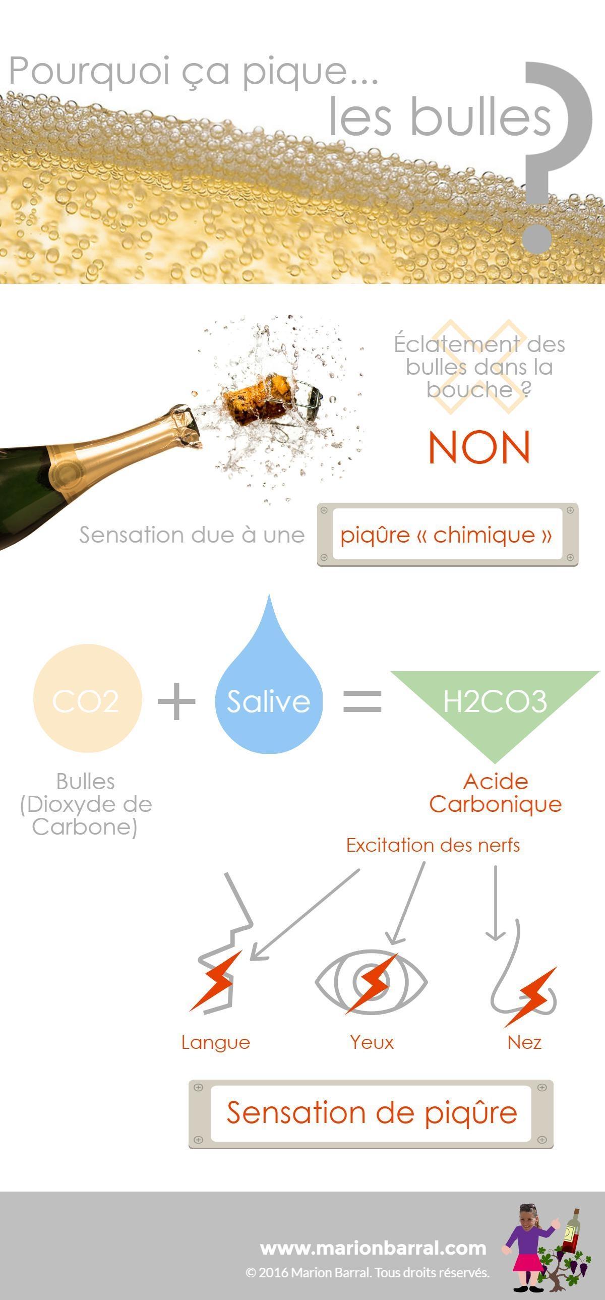 pourquoi ça pique les bulles ? infographie par marion barral