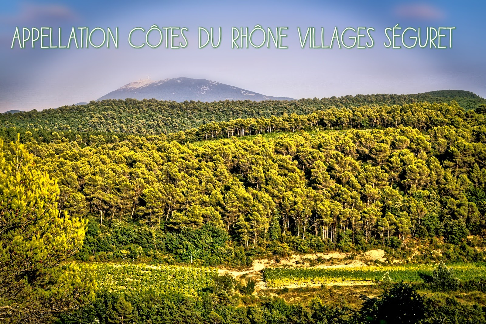 Photo de paysage de l'appellation côtes du rhône villages Séguret