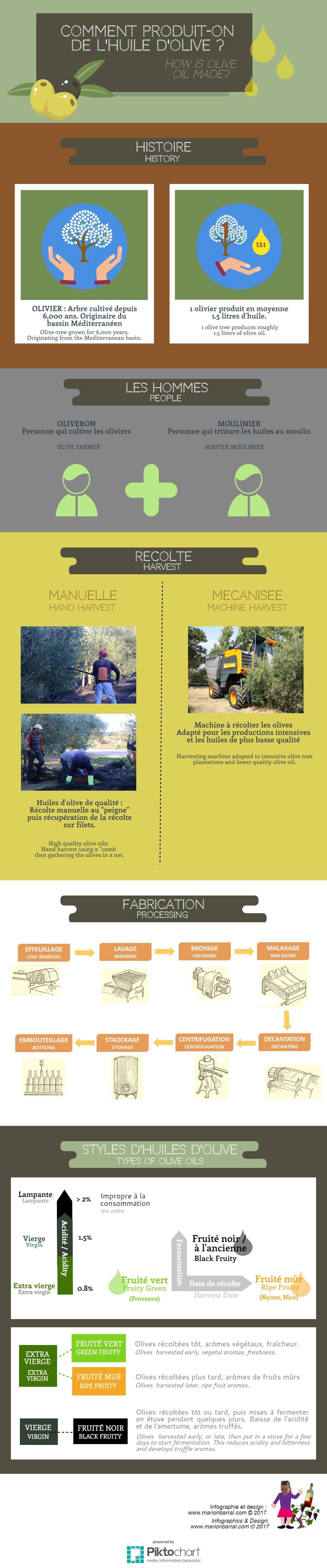 infographie fabrication huile olive making olive oil infographics